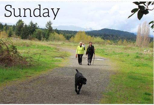 Wordless Wednesday: Sunday Walking Group