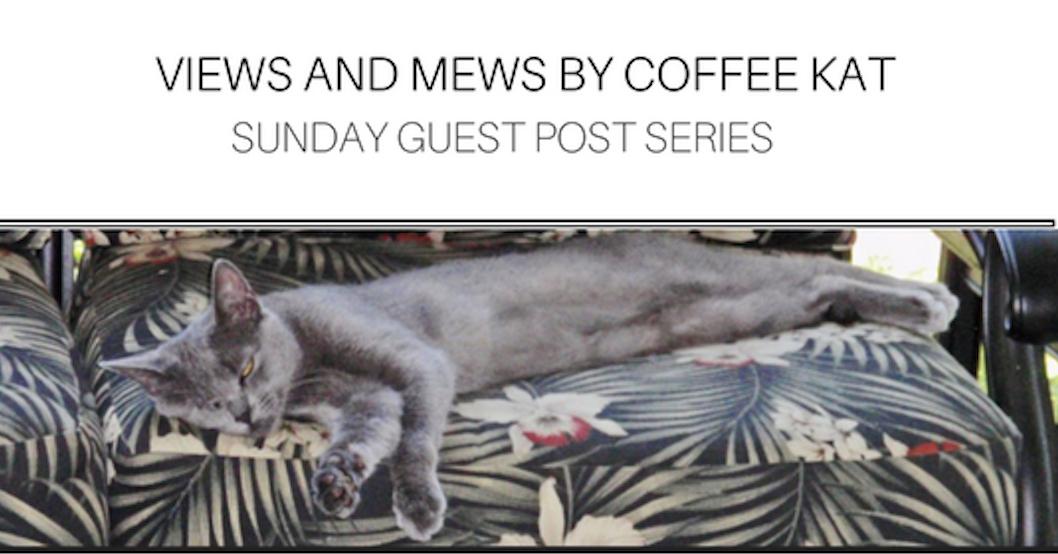 Coffee Kat