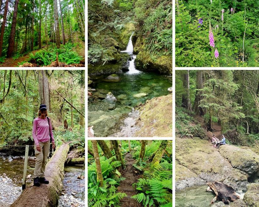 Nle Creek