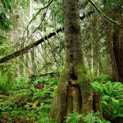 Today - 1 of 1 (1)